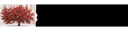 MapleTree IT Logo
